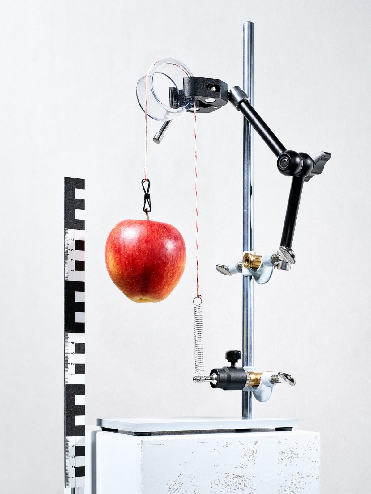 Newton and the Apple von Felix Schöppner